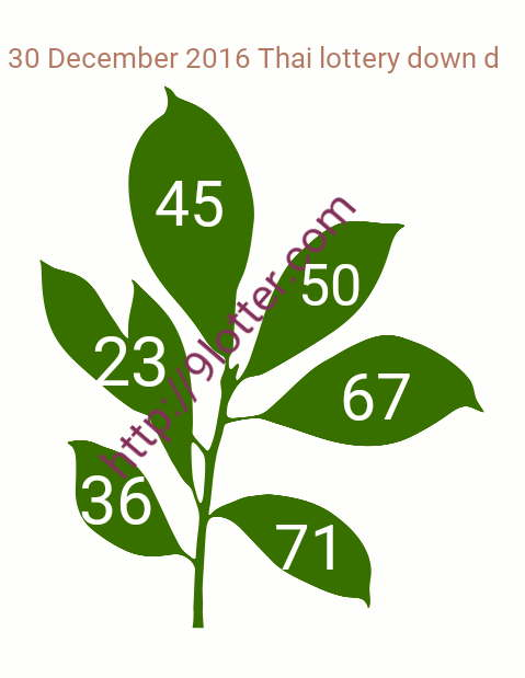 Down special Thai lottery 30-12-2016